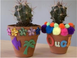 cactus-plants