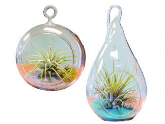 garden-globes